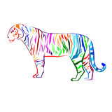 Tiger  wild illustration strength mammal wildlife graphic Stock Image