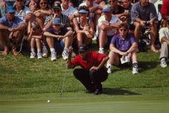 Tiger Woods читая зеленые цвета Стоковое фото RF