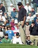 Tiger Woods royaltyfri bild