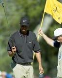 Tiger Woods arkivbilder