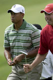 Tiger Woods Photographie stock libre de droits