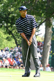 Tiger Woods 2004 Ryder Cup Stock Photos
