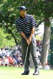 Tiger Woods 2004 Ryder Cup Stock Photos
