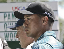 Tiger Woods at the 2006 US Open Royalty Free Stock Photography
