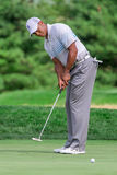 Tiger Woods at the 2012 Barclays. FARMINGDALE, NY - AUGUST 22: Tiger Woods hits a putt at Bethpage Black during the Barclays on August 22, 2012 in Farmingdale Stock Image