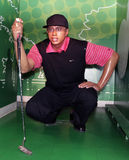 Tiger Woods Imagem de Stock Royalty Free