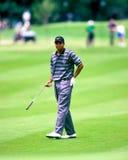 Tiger Woods Image libre de droits
