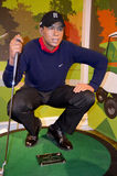 Tiger Woods Foto de Stock