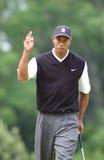 Tiger Woods Photo libre de droits