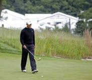 Tiger Woods ayant de l'amusement Image libre de droits