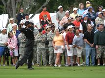 Tiger Woods Doral 2007 Fotografia de Stock Royalty Free