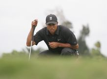 Tiger Woods Doral 2007 Photographie stock libre de droits