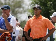 Tiger woods Doral 2007 Royalty Free Stock Image