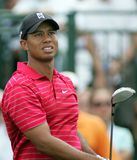 Tiger Woods at Doral in Miami stock images