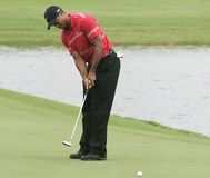 Tiger Woods en Doral en Miami fotos de archivo