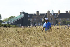 Tiger Woods in Grasses at Muirfield Royalty Free Stock Images