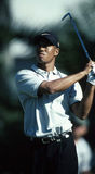 Tiger Woods Royalty Free Stock Image