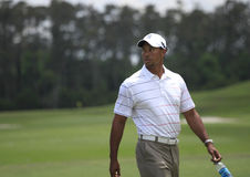 Tiger Woods , The Players, TPC Sawgrass, FL Royalty Free Stock Photos
