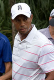 Tiger Woods Royalty Free Stock Photography