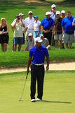 Tiger Woods. Pro player Tiger Woods watches his partner hit prior to finishing his putt Stock Images