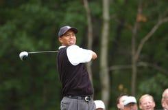 Tiger Woods Professional Golfer imágenes de archivo libres de regalías