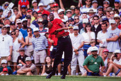Tiger Woods. Tees off during tournament play. (Image taken from color slide stock photo