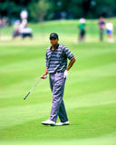Tiger Woods. Tees off during tournament play. (Image taken from color slide Royalty Free Stock Image