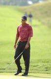 Tiger Woods u 2002 S открыто Стоковое Изображение RF