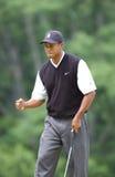 Tiger Woods u 2002 S открыто Стоковые Фото