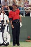 Tiger Woods w akcji przy Doral Country Club zdjęcia royalty free