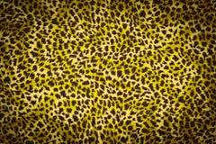 Tiger yellow fur texture Royalty Free Stock Image