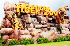 Tiger zoo sriracha thailand. It has many kind of animals. Tiger show Stock Photos