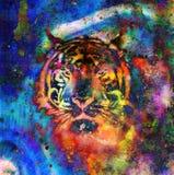 Tigercollage auf Farbzusammenfassungshintergrund, Roststruktur, Tiere der wild lebenden Tiere stock abbildung
