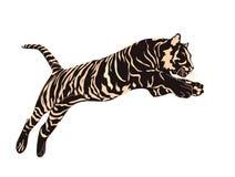 Tigerdiagram vektor illustrationer
