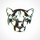 Tigergesichts-Ikonenillustration Stockbilder
