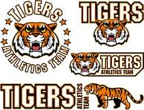 Tigergesichts-Sportemblem des Vektors verärgertes Lizenzfreie Stockfotos