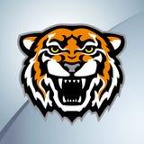 Tigerhauptmaskottchenfarbe Lizenzfreies Stockbild