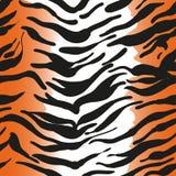 Tigerhud Arkivfoton