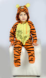 Tigerjunge Lizenzfreies Stockbild