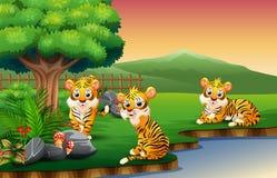 Tigerkarikatur genießen Natur durch den Fluss