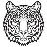 Tigerkopf getrennt Lizenzfreie Stockfotos