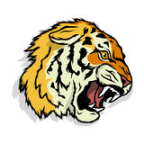 Tigerlogo Stockbild