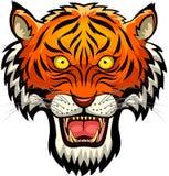 Tigermaskottchengesicht Stockbild