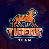 Tigermaskottchenvektor Sportlogo-Designschablone Fußball- oder Baseballillustration Collegeligainsignien, Schulteam Lizenzfreies Stockbild