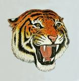 Tigern vrålar teckningen stock illustrationer