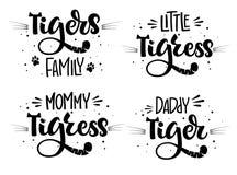 Tigerns familjupps?ttningen av skriften f?r handattraktionkalligrafi som m?rker whithprickar, f?rgst?nk och morrh?r, decore vektor illustrationer