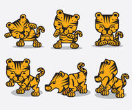 Tigers. Funny tigers. Cartoon style design Stock Image
