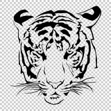 Tigers face on transparent. Royalty Free Stock Photography