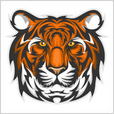 Tigers Face. Vector illustration of a tiger head. Stock Images