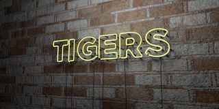 TIGERS - Glowing Neon Sign on stonework wall - 3D rendered royalty free stock illustration Stock Photography